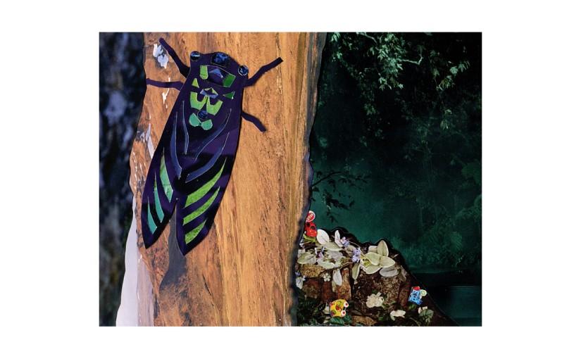 Illustration: gloomy background behind cicada on tree