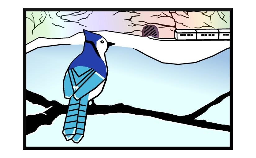 Illustration: blue jay watching train pass lake