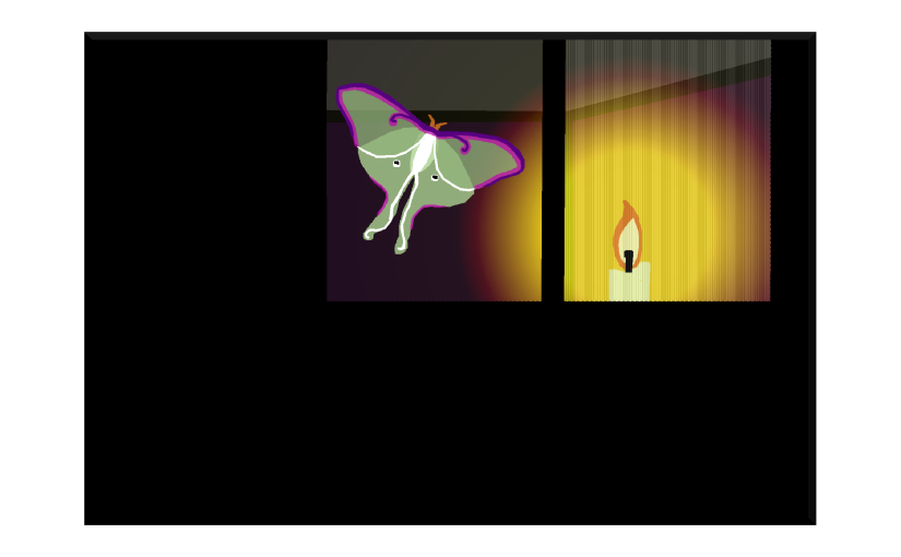 Illustration: luna moth drawn to candle in room