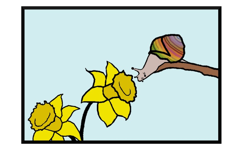 Illustration: snail inspecting daffodil