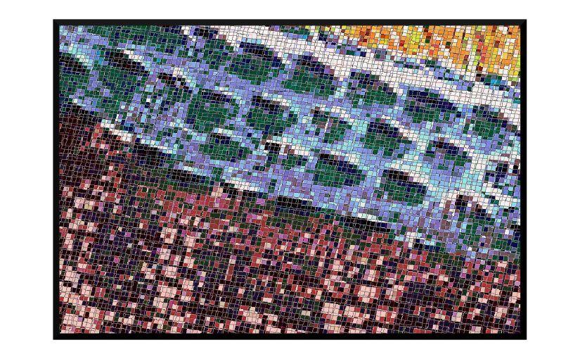 Illustration: closeup of alligator skin