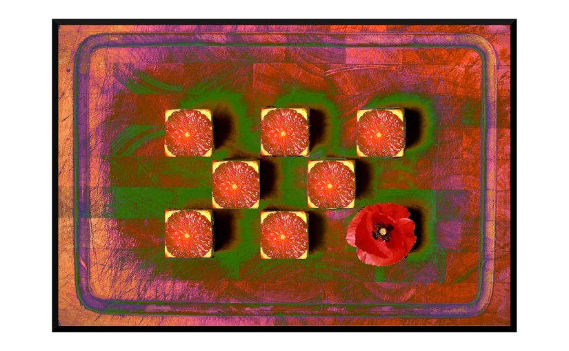 Illustration: cutting board with square oranges and one poppy