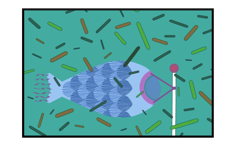 Illustration: fish wind-sock flaps as pine needles blow past