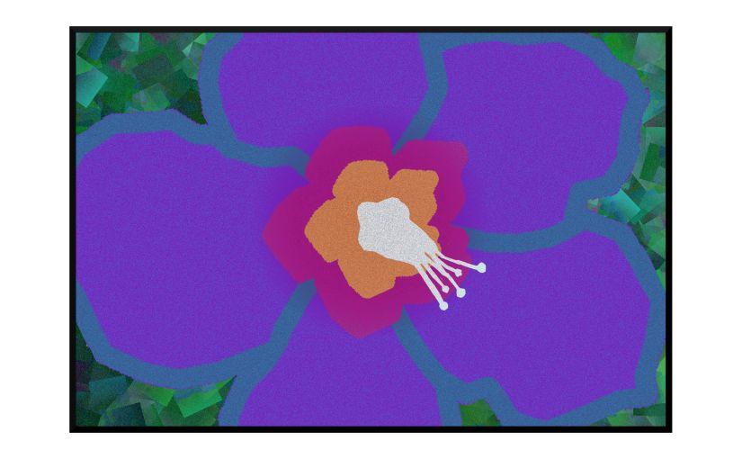 Illustration: close-up of Rose of Sharon flower